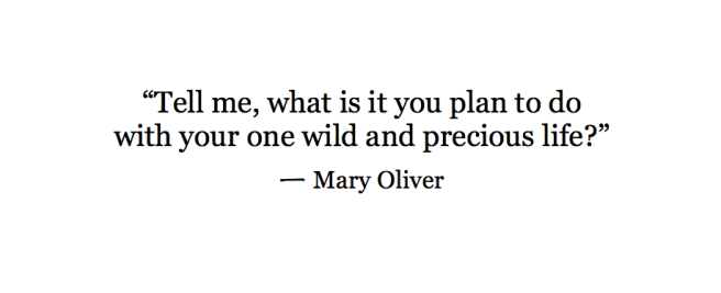 what is it you plan to do with your one wild and precious life? - mary oliver